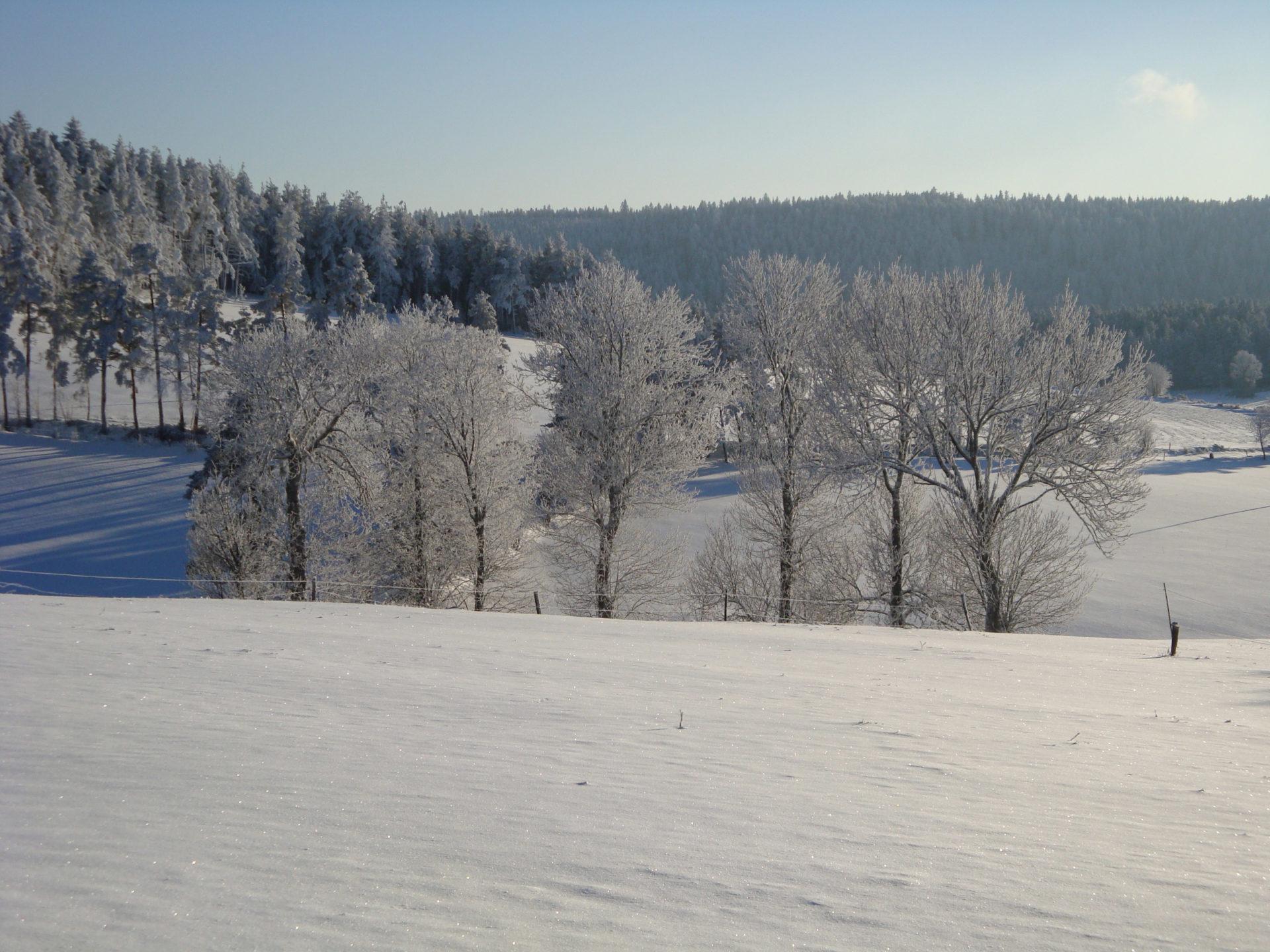 Neige sur la commune de Montregard